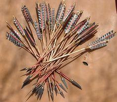 Primitive Arrows