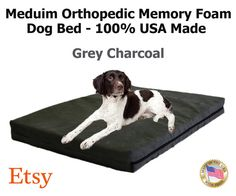 "Medium Dog Bed 34"" x 22"" x 4"" Orthopedic Memory Foam Dog Bed 