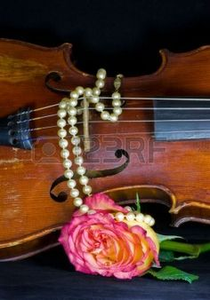 Closeup of an old violin, draped with string of pearls with variegated rose on black background