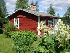 punainen,mökki,piha,pihan istutukset,punainen mökki,kesä,inspiroiva piha,kesäasunto,kakkosasunto