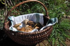 Porcini Laundry Basket, Wicker Baskets, Bassinet, Tuscany, Home Decor, Homemade Home Decor, Crib, Tuscany Italy, Cot