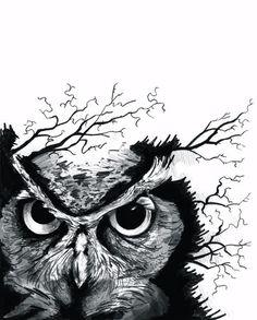 #owl #drawing #tattoo