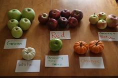 Autumn Math with Apples and Pumpkins--Use the sights and smells of the season to teach basic math skills to preschoolers.