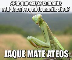 Jaque mate ateos. #humor #risa #graciosas #chistosas #divertidas
