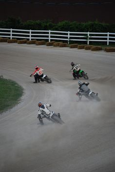 Flat track races, Leamington, ONT