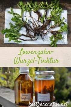 Dandelion root tincture strengthens the spirits and cleanses the joints - Health And Nutrition, Health And Wellness, Health Fitness, Healthy Herbs, Healthy Life, Taraxacum Officinale, Beauty Recipe, Medicinal Plants, Natural Medicine