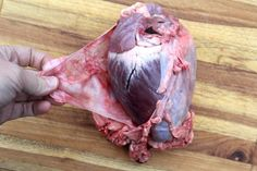 Deer hearts are one of the most underappreciated cuts of venison around. While many hunters Deer Recipes, Wild Game Recipes, Deer Heart Recipe, Deer Processing, Deer Meat, Venison Recipes, Deer Hunting, Cooking Recipes, Yum Food