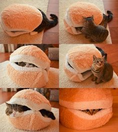 The Kitty Hamburger Pillow! Since two people have now sent me this, I'm thinking I should get the furry terrorists one!