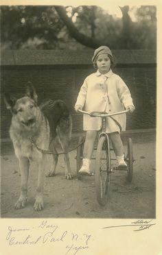 Love this old photo...young girl on tricycle with her German Shepherd.  circa 1915ish. zo zagen ze er ooit uit, en zo recht liep hun rug ooit. of hoe selectieve kweek alles kan verpesten op minder dan 100 jaar tijd.