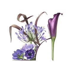 http://www.soc-botanical-artists.org/artist/billy-showell/