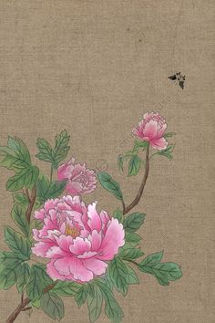 Chinese Painting Flowers, Chinese Flowers, Peony Painting, Light Painting, Fabric Painting, Peony Illustration, Simple Illustration, Gold Photo Frames, Chinese Art