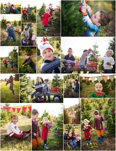 Holiday mini sessions tree farm Copyrights Funky Monkey Photography http://www.funkymonkeyphoto.com