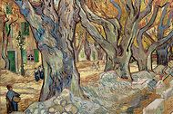 From Van Gogh Up Close, temporary exhibit at Philadelphia Museum of Art