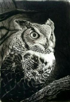 Amazing hyper-realistic charcoal drawing of owl - Gary Fuller Art