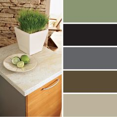 FLOFORM Color Pallette dining room or bathroom