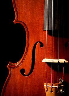 Violin Close-Up by w.jrazeq, via Flickr