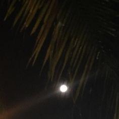 #fullmoon #moon #nature #naturelovers #minimalist #minimal