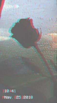 Wallpaper Iphone Tumblr Grunge, Iphone Wallpaper Tumblr Aesthetic, Wallpaper Iphone Love, Walpaper Iphone, Aesthetic Backgrounds, Rose Wallpaper, Wallpaper Quotes, Aesthetic Wallpapers, Phone Backgrounds