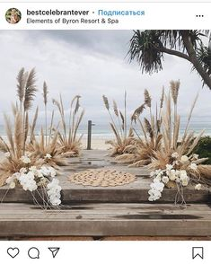 Everything natural, eco, green is in trend right now. So is this wedding altar o… Everything natural, eco, green is in trend right now. So is this wedding altar on the beach framed with pampas and dried grass☺️⠀⠀⠀⠀⠀⠀⠀⠀⠀ For Love Of Pampas⠀⠀⠀⠀⠀⠀⠀ Cottage Wedding, Garden Party Wedding, Fall Wedding, Wedding Cake, Boho Beach Wedding, Floral Wedding, Wedding Flowers, Wedding Bouquets, Wedding Dresses