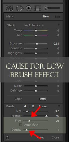 Lightroom Brushes: Learning about Flow and Density