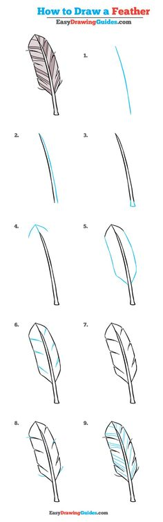 Learn How to Draw a Feather: Easy Step-by-Step Drawing Tutorial for Kids and Beginners. #Feather #drawing #tutorial. See the full tutorial at https://easydrawingguides.com/how-to-draw-a-feather-really-easy-drawing-tutorial/.