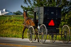 If you've heard of the Amish, you've probably heard ofrumspringa. Is whatwe know about ita myth, or is it reality? The picture that has been painted for us by the media is thatrumsp…