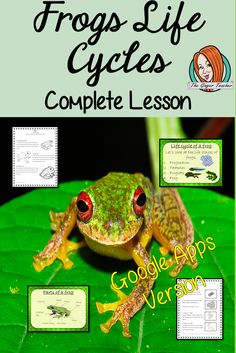 Distance Learning Life Cycles of a Frog Google Slides Lesson These resources are a complete lesson on Frog Life Cycles, from my unit on Life Cycles of Animals. Great for teaching using frog life cycle activities. #teaching #lifecycles #googleclassroom Activity Games, Activities, All About Me Crafts, Lifecycle Of A Frog, Role Play Areas, Frog Life, Life Cycles, Teacher Newsletter, Teacher Resources