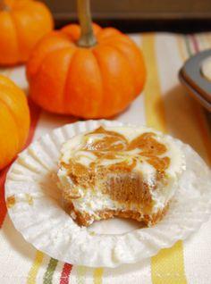 Pumpkin Swirl Cheesecake Cupcakes | SarahCupcake