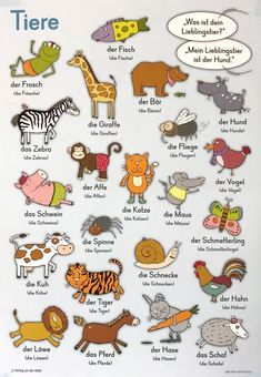 Tiere deutsch lernen German vocabulary for animals Study German, Learn German, German Grammar, German Words, German Resources, Deutsch Language, Germany Language, German Language Learning, Education