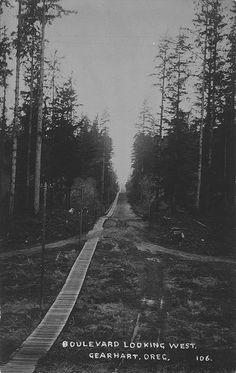 Boulevard looking west near Gearhart, Oregon