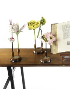 Display these fun and educational flower models as your desk accessory in your home or office and get ready for some compliments.