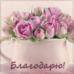 Butterfly Art, Good Morning, Rose, Birthday, Flowers, Cards, Good Sayings, Buen Dia, Pink