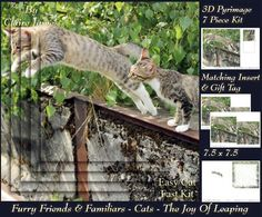Furry Friends Familiars Cats The joy of leaping Tag  on Craftsuprint - Add To Basket!
