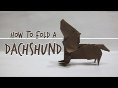The Best Tutorial For Dachshund Lovers Ever! Learn How To Fold An Origami Dachshund! -*+The video you're about to see will teach you how to fold an origami dachshund dog with your ow Dachshund Funny, Dachshund Art, Daschund, Dapple Dachshund, Dachshund Puppies, Chihuahua Dogs, Dachshund Gifts, Dog Love, Puppy Love
