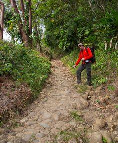 Empedrado del Camino Real de Panamá