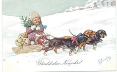 K Feiertag Three Dachshunds Pull Little Child with Tree Presents | eBay