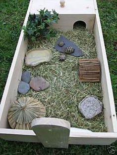 Horsefield Tortoise, Tortoise House, Tortoise Habitat, Turtle Habitat, Turtle Enclosure, Reptile Enclosure, Turtle Tank Setup, Reptiles, Outdoor Tortoise Enclosure