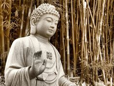 The serenity and peace I find with Buddha I wish I could share with others.