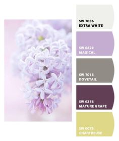 Paint colors from Chip It! by Sherwin-Williams These are the colors I want in my parlor, or office, or den, or MY room!