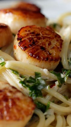 Rich and creamy garlic butter scallops on pasta... delightfully decadent!