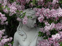 lovely #lilac #statue