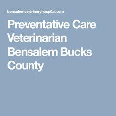 Preventative Care Veterinarian Bensalem Bucks County