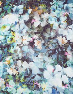 Photographic Floral Stole