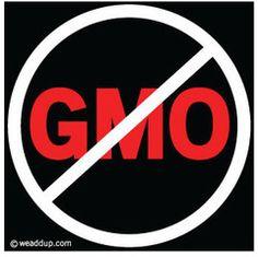 No GMO Magnet | We Add Up-->> http://weaddup.com/collections/we-add-up-magnets/products/no-gmo-magnet#content