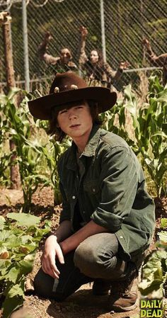 Carl Grimes (Chandler Riggs) - The Walking Dead. Stay in the effn house Carl! Chandler Riggs, Carl The Walking Dead, Walking Dead Season 4, Carl Grimes, Best Tv Shows, Best Shows Ever, 17 Kpop, Twd Memes, Georgia