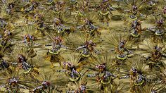 AP Photo/Victor R. Caivano Dancers of Grande Rio samba school parade during carnival celebrations at the Sambadrome in Rio de Janeiro, Brazil, Tuesday. Nearly paying spectators turn out for the all-night spectacle at the Sambadrome. Pictures Of The Week, Great Pictures, Cool Photos, Amazing Photos, Carnival Dancers, Rio Carnival, Carnival Parade, Photo Essay, Big Picture