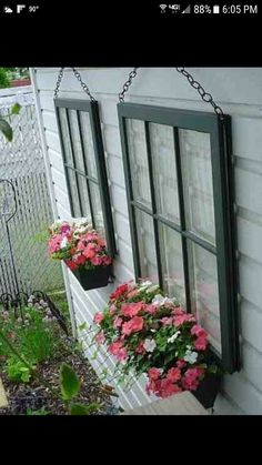 Old windows with flower boxes