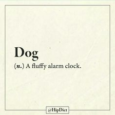 Dogs are amazing Description of your cute furry alarm clock. Best Dog Training, Dog Training Bells, I Love Dogs, Puppy Love, Puppy Quotes, Pet Quotes, Witty Quotes, Dog Collar Tags, Dog Collars