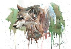 Wolf Watercolor high res by Frabulator on DeviantArt