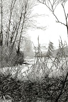 Galleria del Leone - Livio Ceschin Landscape Tattoo, Landscape Drawings, Landscape Illustration, Landscape Paintings, Stippling Art, Angel Drawing, Ink Pen Drawings, Nature Drawing, Black White Art